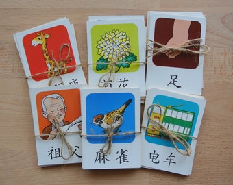 Vintage Chinese / English Illustrated Flash Cards Lot of 8  Language Card