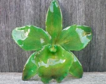 REAL Natural Bold Shades of Emerald Green ORCHID Pin and Pendant