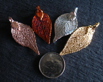 Shop Sale.. 1 pc, LAUREL LEAF Charm Pendant, Real Leaf, 1-1.5 inch, SMALL, pick Sterling Silver / 24k Gold / Copper / Rose Gold Plated solo
