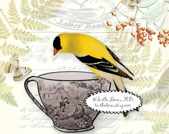 Download - Goldfinch and Black Transferware Teacup 12x12 Design