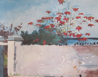 Winslow Homer, A Wall, Nassau Color Plate Of 1898 Watercolor, Unframed Print
