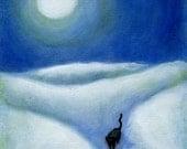 Black Cat Moonshadow. 8 x 10 print