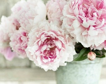 Peony Photograph -  Chinese Peonies, Floral Decor, Large Wall Art, Home Decor