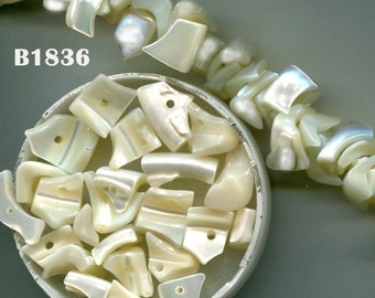 Mother of Pearl  Chips, Pendants, Embellishments B1836.B1852.O177 *