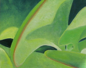 Kalanchoe Shadow. Framed 8 x 8 inch original oil painting by Yvonne Wagner. Succulent. Flap Jack. Plant painting. Zen.