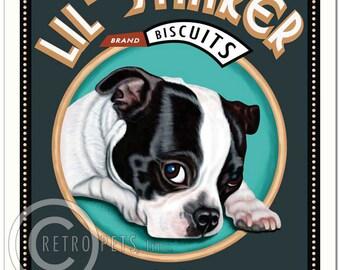 8x10 Boston Terrier Art - Lil' Stinker B/W  -  Art print by Krista Brooks