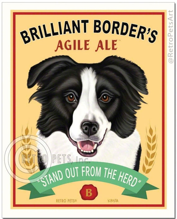 """8x10 Border Collie Art - Brilliant Border's Agile Ale """"Stand Out From The Herd"""" Art print by Krista Brooks"""