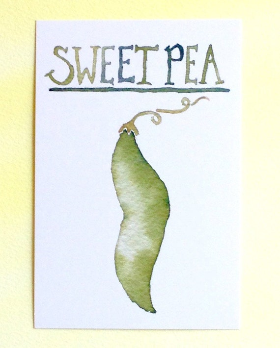 Three Sweet Pea Postcards, gardening quote on back, 4 in x 6 in, silky smooth card stock, foodie birthday gift