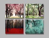 SALE, 4 Seasons Wall Art, Four Seasons Art Prints, 4 Seasons Tree Prints, 4 Photo Set, Nature Photography, 4 Seasons Photos