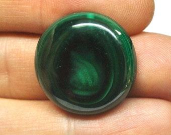 Natural Malachite Round Cabochon - 24.1 x 6.4 mm - 45.5 ct - 150508-39