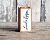 Botanical Candleblock: No. 1, Smokestack Fig. 1 - by Peg and Awl