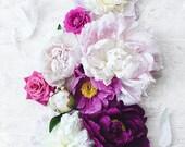 Peonies 11x14 floral pink ruffles garden romantic