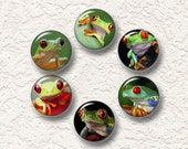 "Set Of 6 Frog Magnets, Refrigerator Magnets, Nature Magnets 1.25"" Buy 3 Sets Get 1 Set Free 6-017M"