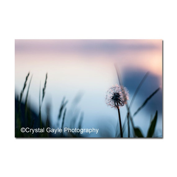 https://www.etsy.com/listing/239649110/dandelion-wall-art-sun-photography-hom?ref=shop_home_active_12