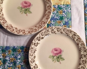 Vintage 2 Piece Bread and Butter Plate Set Taylor Smith Pink Rose With Golden Floral Edge Made in The USA #2152