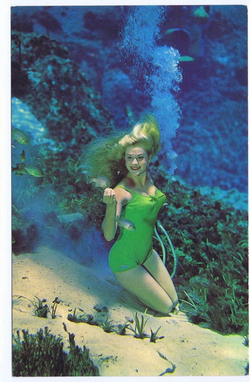 Weeki Wachee State Park holding auditions for world-famous ... |Meet Weeki Wachee Mermaids