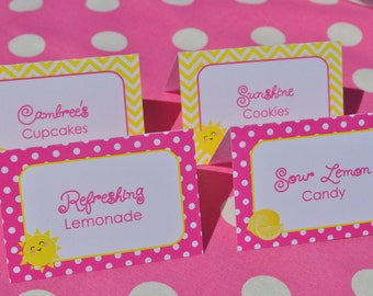 Lemonade and Sunshine Birthday Party Food Labels - You Are My Sunshine Pink Lemonade Theme Birthday - Personalized and Printed - Set of 12