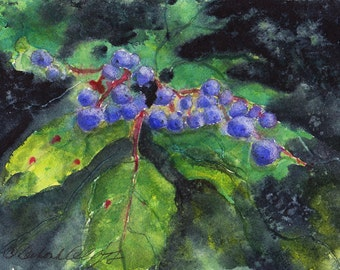 Oregon Grape, Watercolor Original, State Flower, Green, Purple