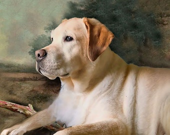 11 x 14 Custom Portrait Dog Portrait Hand Painted on Stretched Canvas
