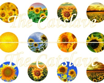 "Sunflower Magnets, Sunflower Pins, Sunflowers, Fri Magnets , 1"" inch Pins, Buttons, Hollowbacks, 12 ct"
