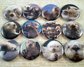 "Sea Otter Magnets, Sea Otter Pins, Gift Set, Nature Lovers Gift,  Western Sea Otters, 1"" Flat, Hollow Back, Cabochons"