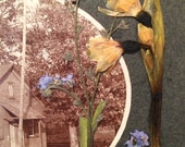 Altered Antique Photo - Mill Creek School - Pressed Flowers  - Forget Me Not - Pansy - Mixed Media