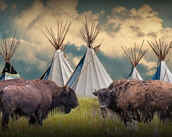 American Buffalo Bison Herd by Indian Tribe Teepee Village on the Prairie No.3095 Animal Wildlife Native American Culture Photography