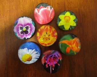 BEAUTiFUL BLOSSOM FLOWER FLORAL Magnets Set of 7