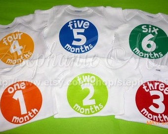 12 Monthly Bodysuits (onesies) for Boys or Girls