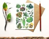 Cactus Succulent Print - blank card - botanical print - terrarium flowers plants flora cactus cacti succulent garden - gift for gardener