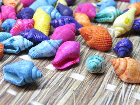 Miniature shells dyed mini seashells by miniaturemakersupply for Tiny shells for crafts
