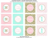One First Birthday girl coral pink  mint gold PRINTABLE Cupcake Toppers  chevron polka dot glitter 1st birthday - 1031