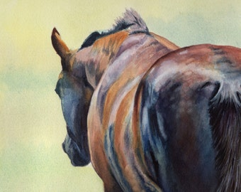 Serenity - horse greeting card