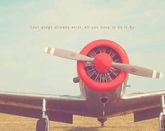 Red Airplane, Silver Airplane, Airplane Art, Aviation Photography, Airplane Art Print, Airplane Print, Aviation Quotes, Airplane Quotes