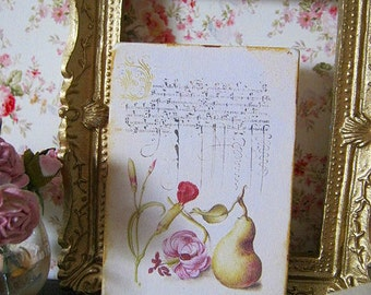 16th Century Calligraphy & Fruit Print for Dollhouse Miniature