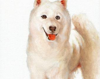 New Original Oil DOG Portrait Painting SAMOYED WHITE Art Puppy Artist Signed Artwork