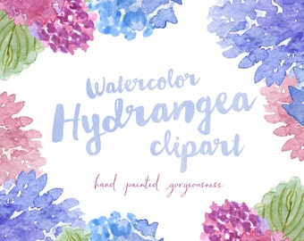Hydrangea Watercolor Hand Painted Clipart Clip Art - Personal and Commercial Use - hydrangeas garden leaf leaves blue purple pink green