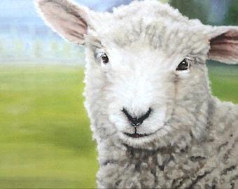 """Original Oil Painting: Young lamb in pasture """"Sweet Lambkin"""""""