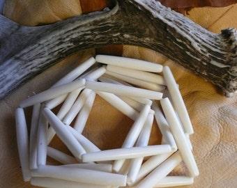 "Native American 10 Pc. Bleached Bone 2"" Hair Pipe Beads"