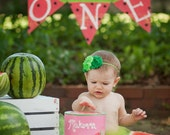 TROPICAL BIRTHDAY BANNER, Tutti Frutti Party, One In A Melon Decor, Tropical Banner Sign, 1st Birthday Girl Decorations, Melon, One Letters