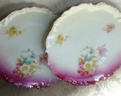 Bavarian China Set of 2 Plates Floral Pattern with Bright Pink Fuchsia Gold Accents