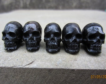 Excellent Quality  Hand Carved horn 5 piece  Skull Bead horn , Carved Ox horn , not drilled  S5845