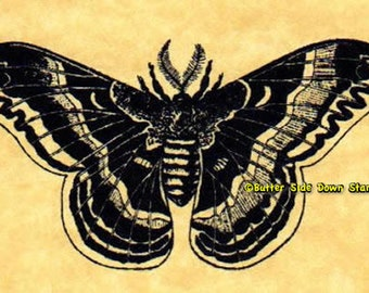 Promethea Moth Rubber Stamp