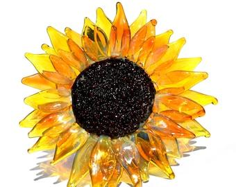 Gorgeous Sun Flower