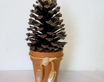 Pine Cone Shell Christmas Tree