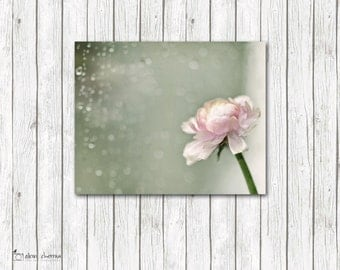 Dreamy Flower Photography, Canvas Art, Cottage Chic Decor, Pastel Wall Art, Teal & Pink