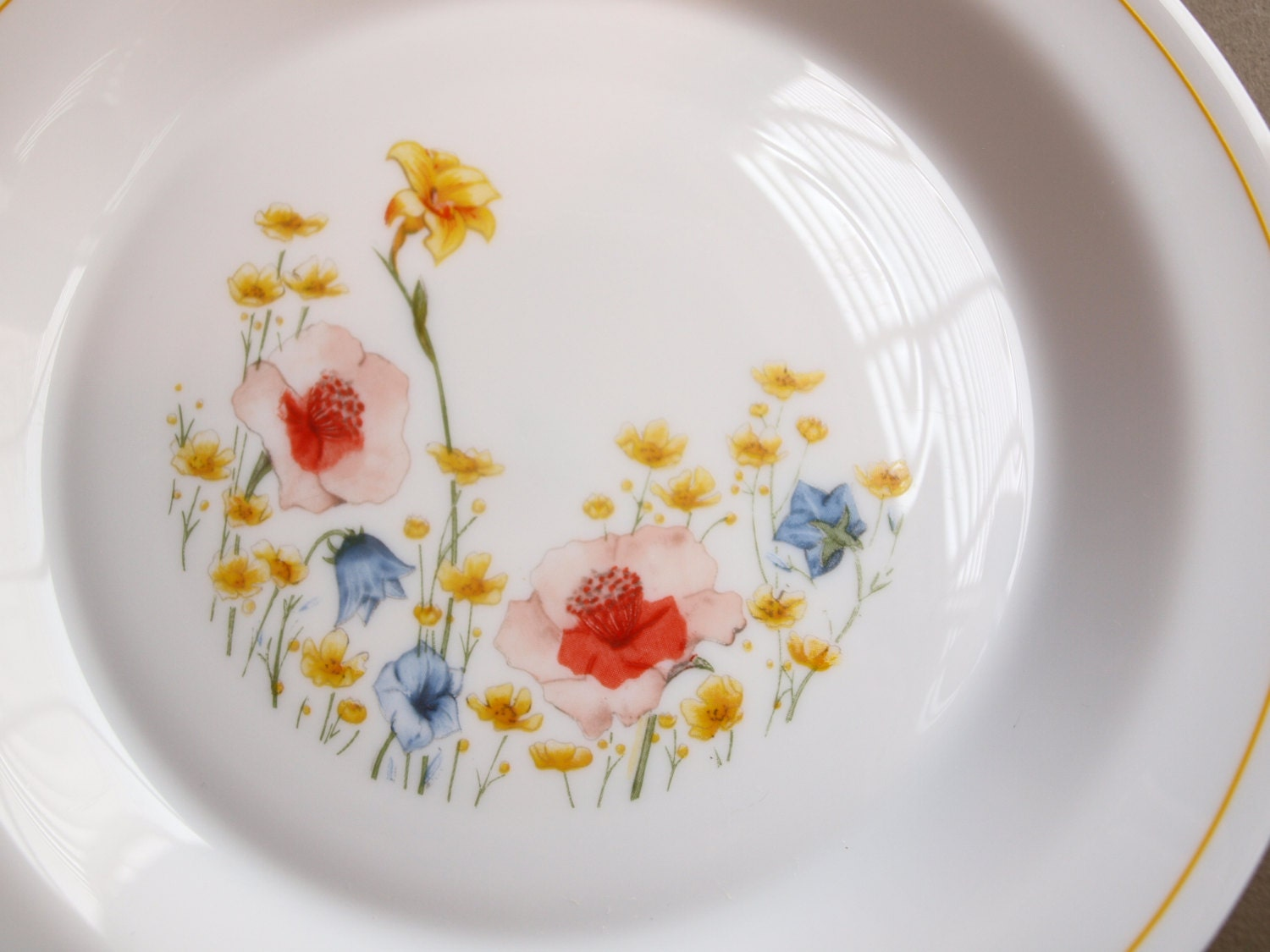 About Arcopal France Dinnerware Patterns - Patterns Kid