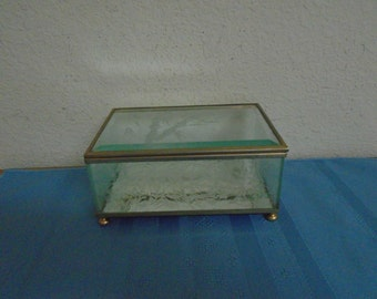 Mirrored Bottom / Footed / Hand Etched / Glass Case / Surrounded by Brass  REDUCED
