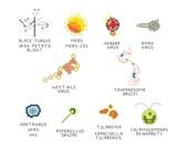 Cross Stitch Pattern -- Common Microbes, set 9
