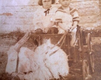Kids in Goat Cart Real Photo Postcard Vintage RPPC